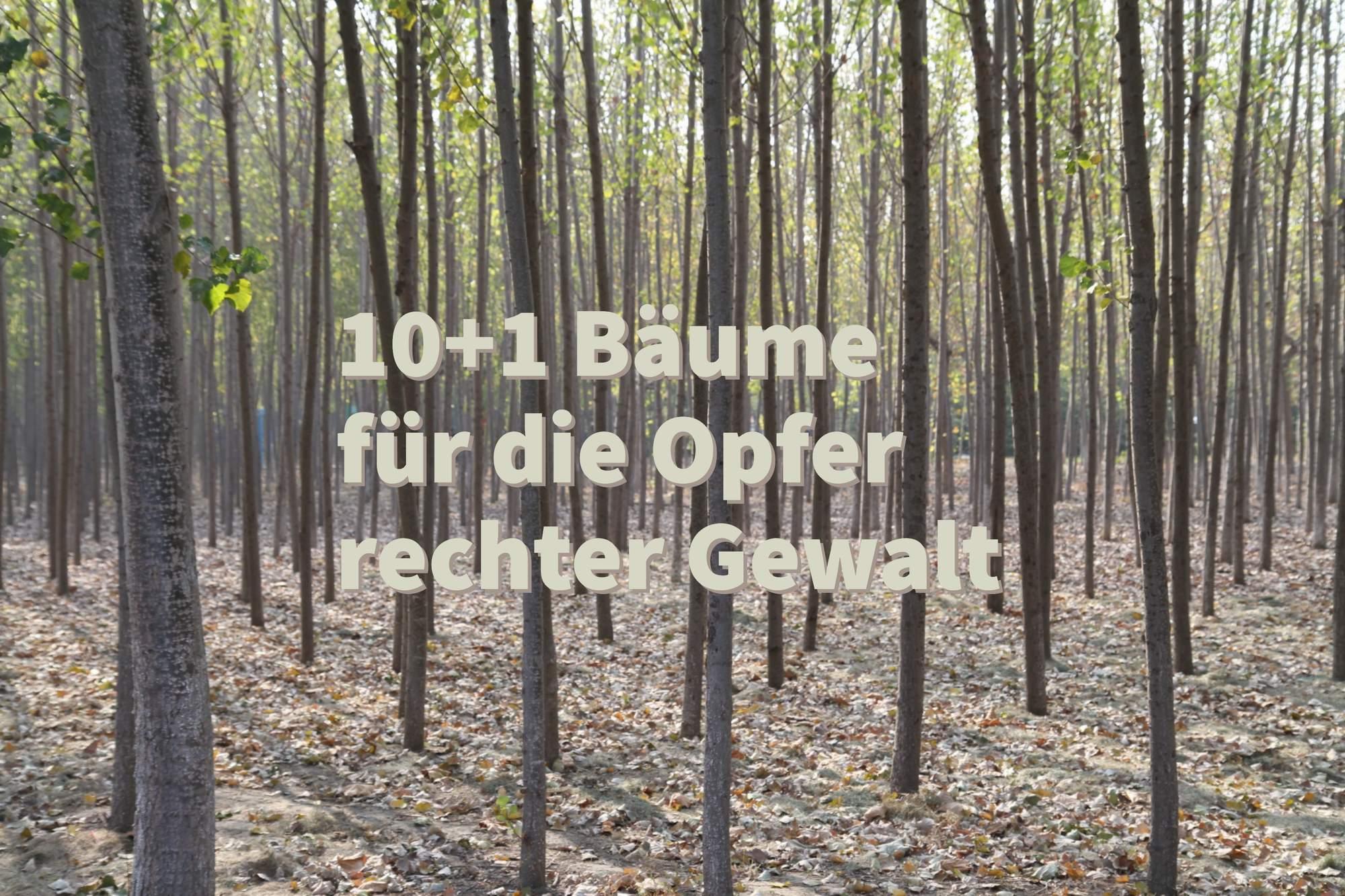 10+1 Bäume: Ein Mahnmal für die Opfer rechter Gewalt
